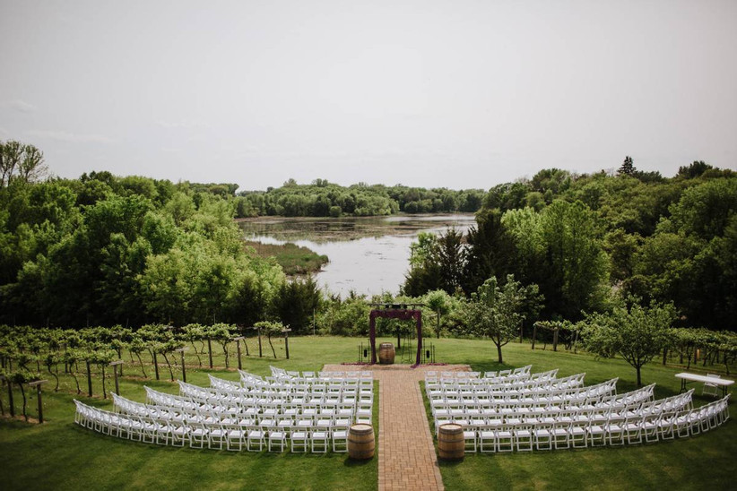 wedding ceremony among vineyards with lake view in the background