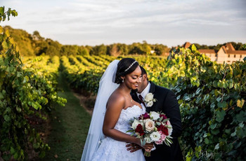 The Best U.S. Destinations for Vineyard Weddings