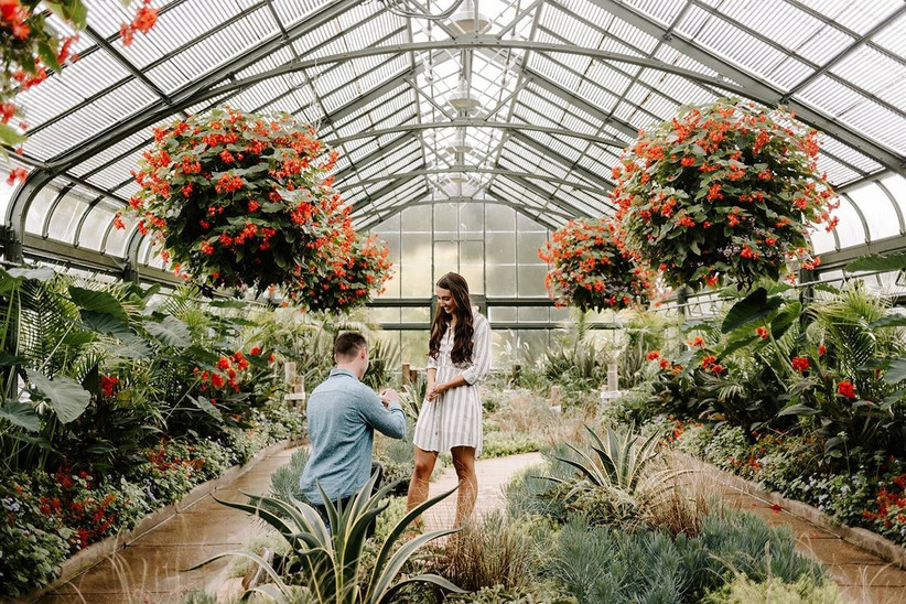 proposal at indoor garden conservatory