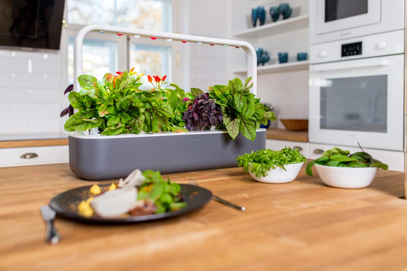 Large indoor smart garden in gray and white filled with thriving greens
