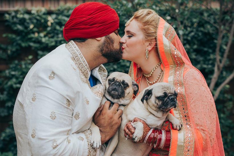 wedding couple holding 2 dogs
