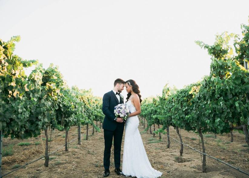bride and groom pose in vineyards