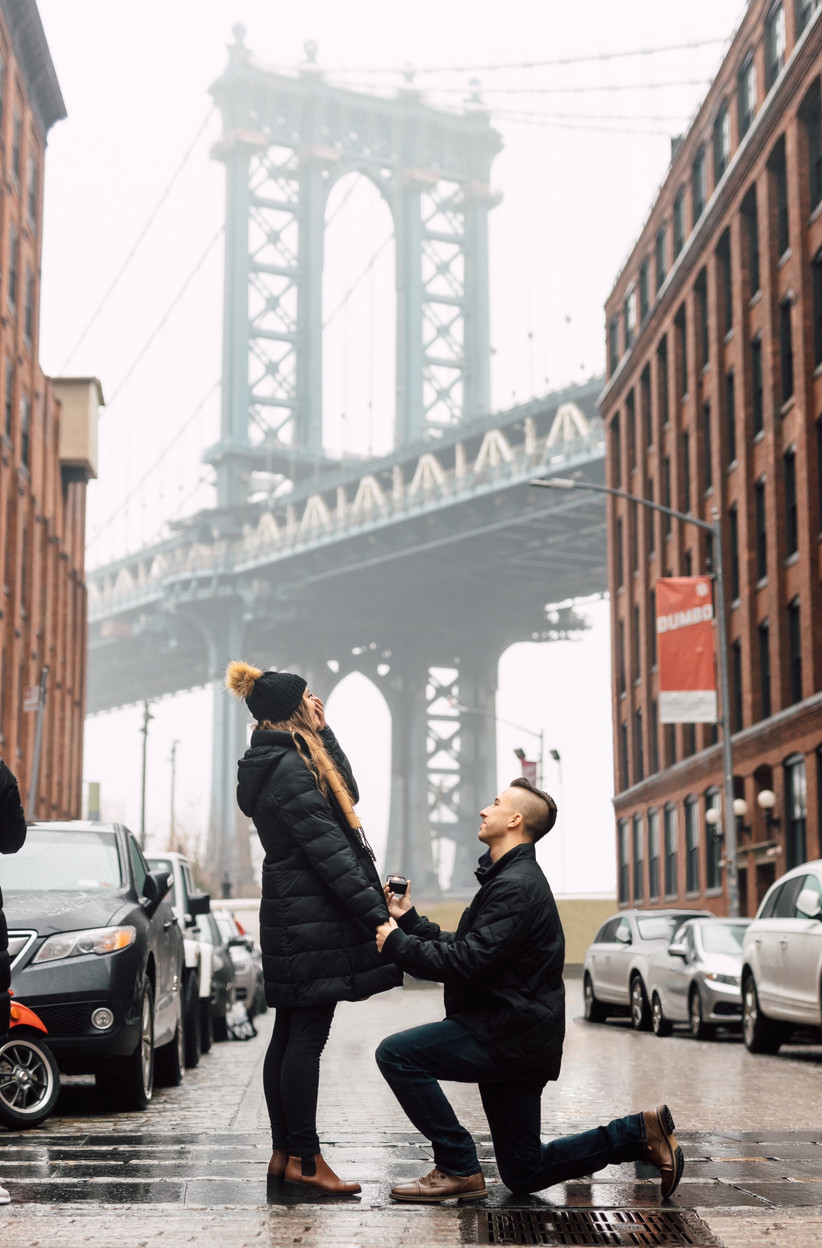 NYC proposal brooklyn view of bridge