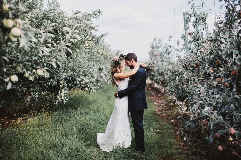 gilbert cellars wedding