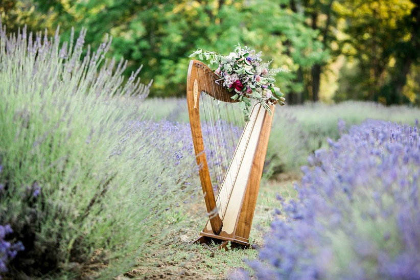 harp decorated with flowers sits in a lavender field