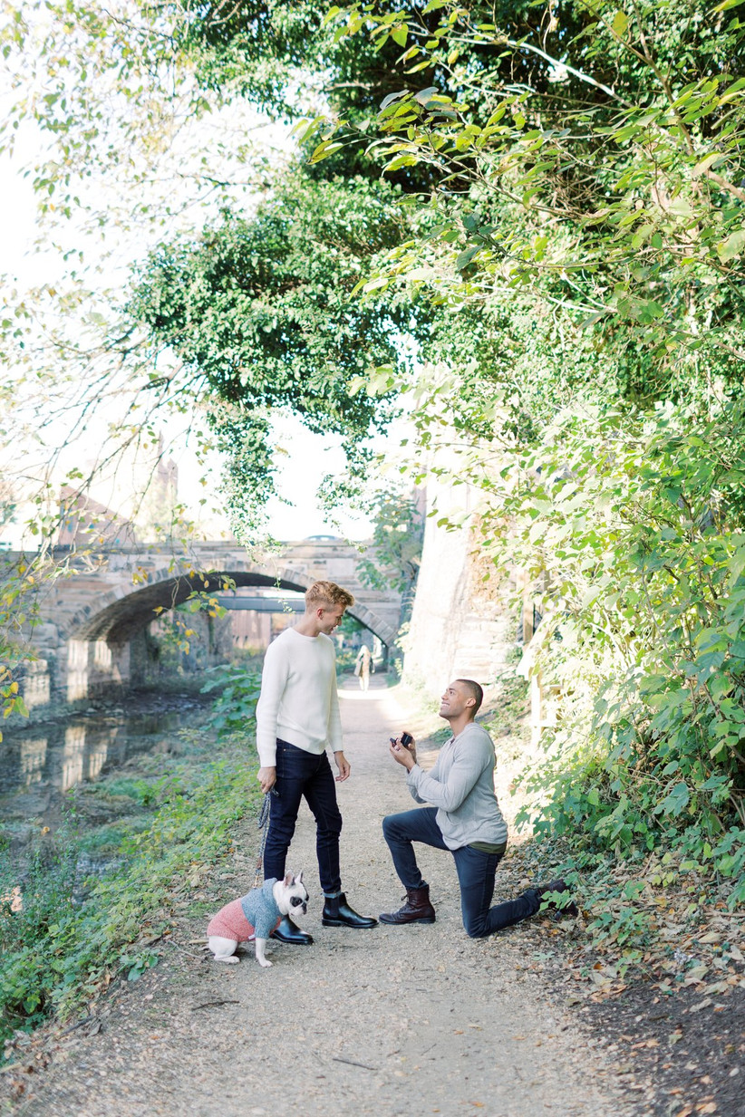 two grooms proposal picture with french bulldog