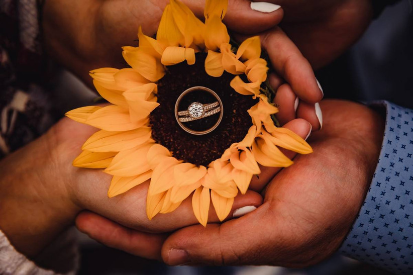 close-up of couple holding a sunflower in their hands with wedding ring and engagement ring in the center of the flower