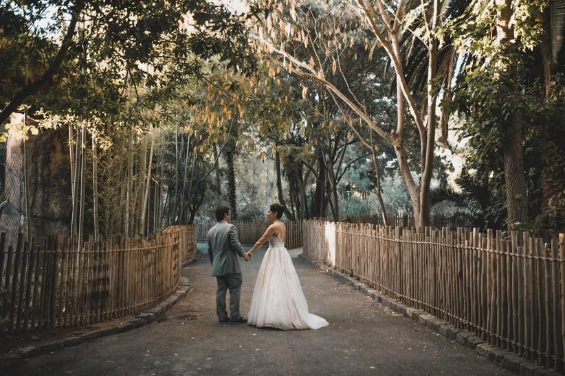 bride and groom walking at sacramento zoo