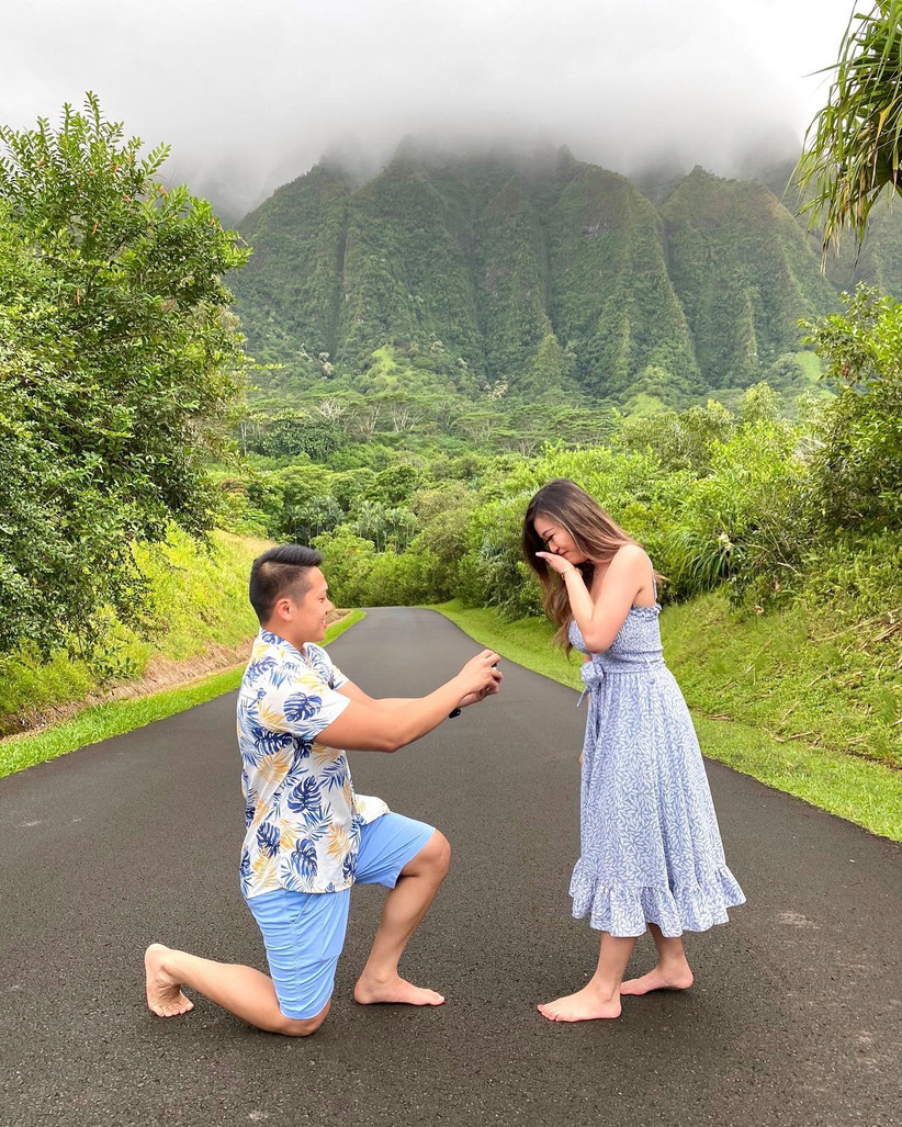 hawaii proposal