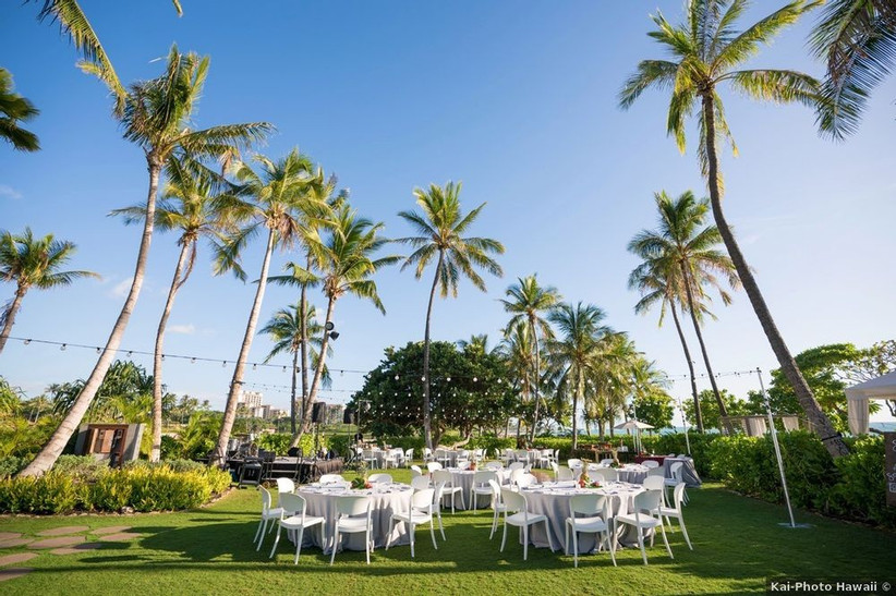 outdoor wedding reception spacious green lawn surrounded by tall palm trees and hedges for privacy with string light canopy