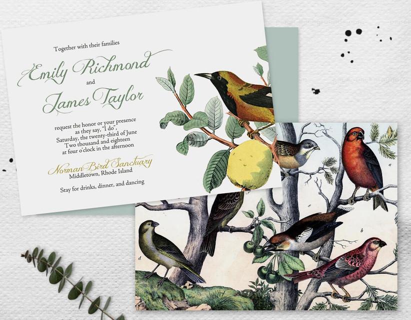 whimsical spring wedding invitation with audubon style bird print