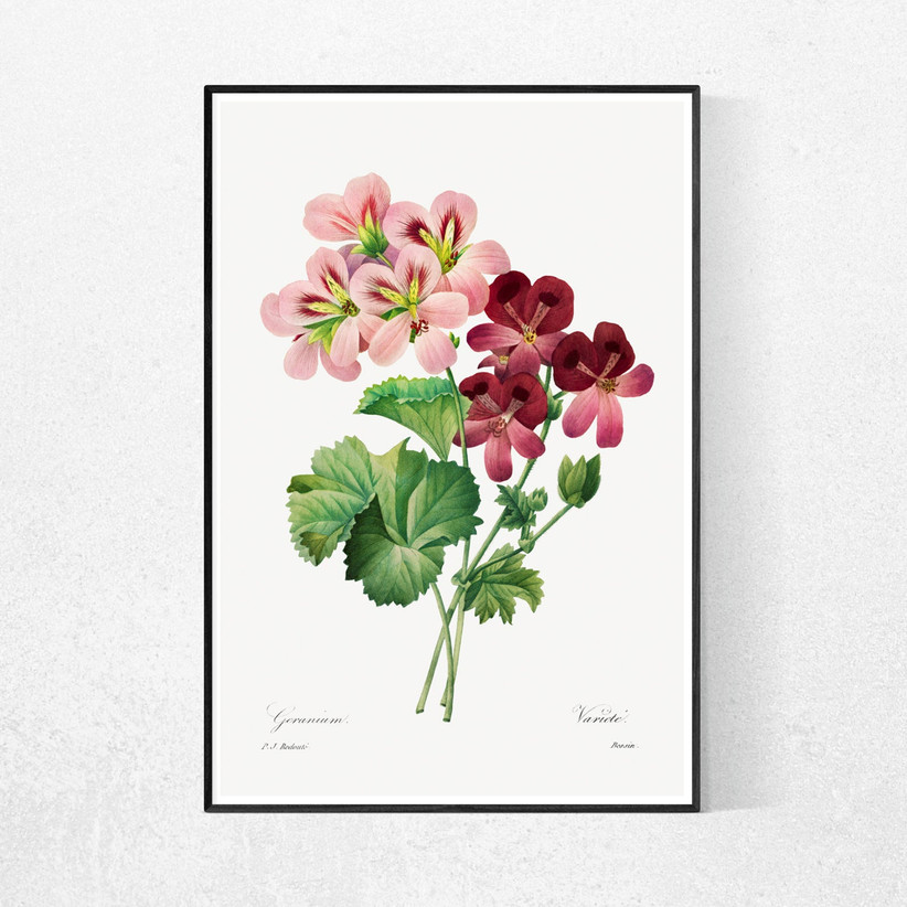 a framed painting of pink flowers