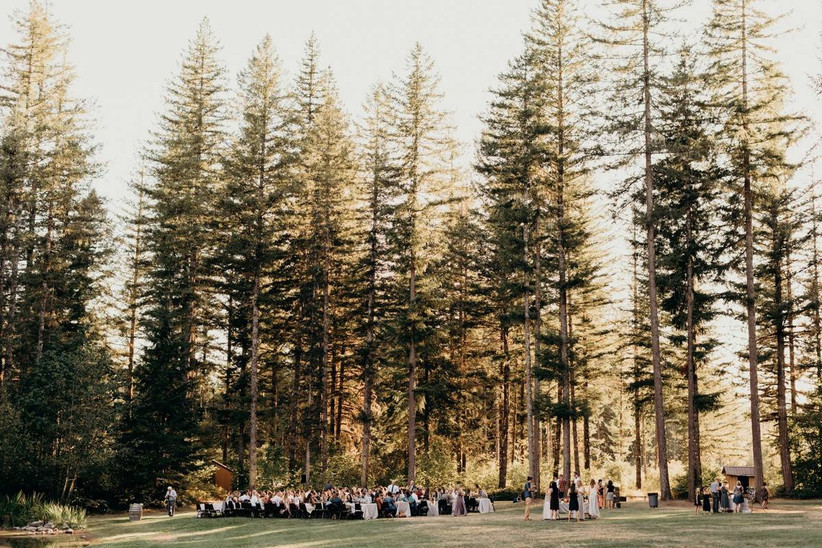 wedding ceremony in outdoor forest setting