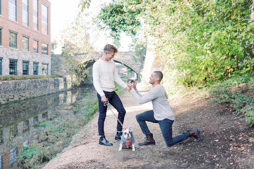 LGBTQ+ proposal with french bulldog