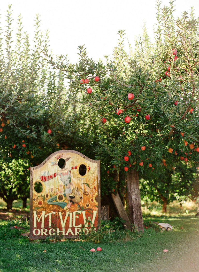 Mt. View Orchards Weddings