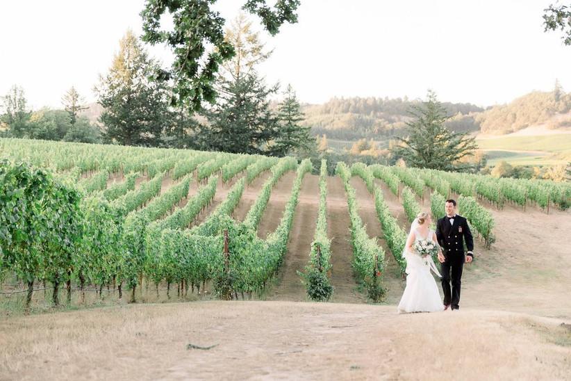 zenith vineyard
