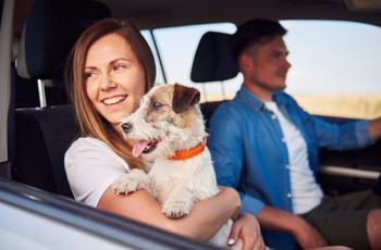 What to Do If Your Significant Other Doesn't Like Your Pet