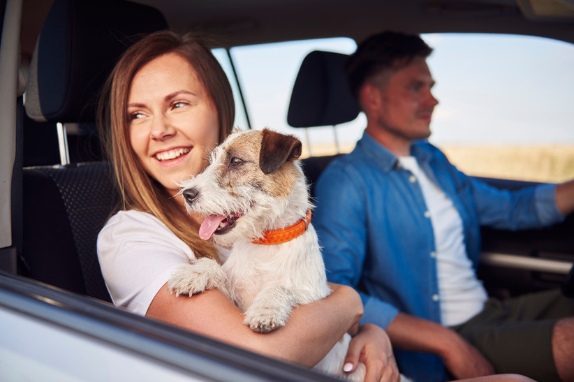 couple riding in car with dog