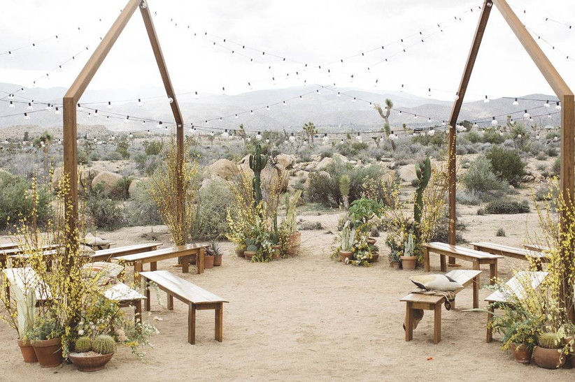 modern ceremony arch with string lights and potted plants