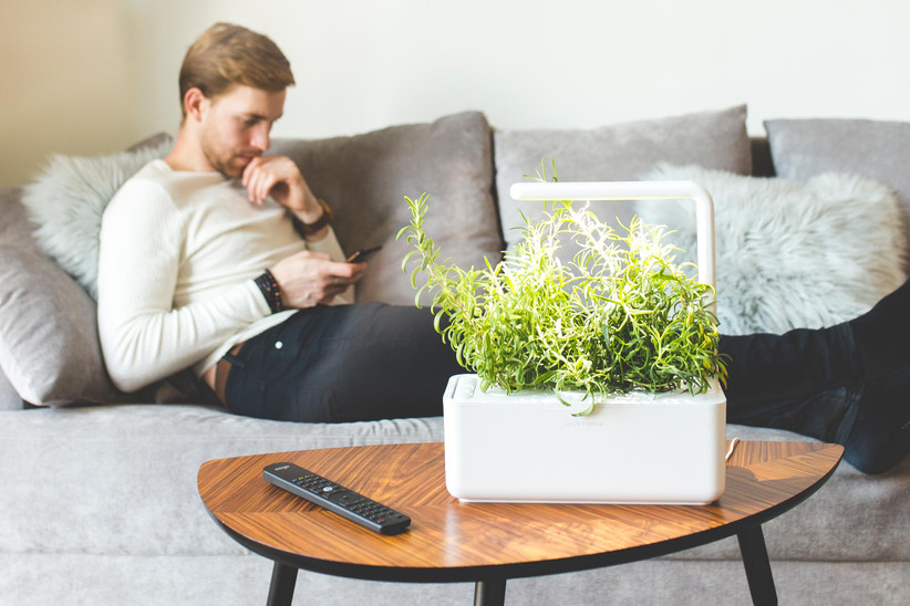 Man lounging on sofa on his phone with white smart garden on coffee table full of greens
