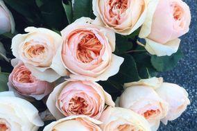 South Florals