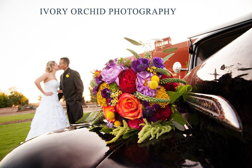 Ivory Orchid Photography
