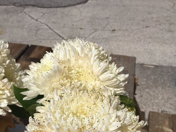 Tmx Img 0529 51 935100 Des Moines, IA wedding florist