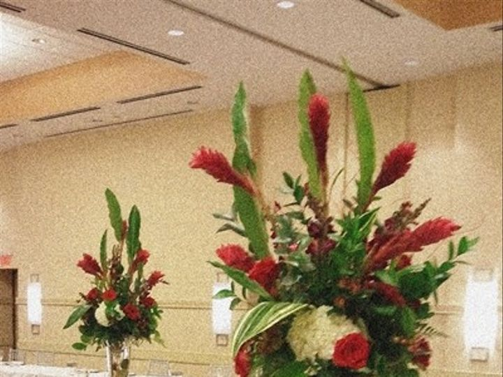 Tmx 1402932512729 2012 03 03 16.53.49 600400 Reston, District Of Columbia wedding florist