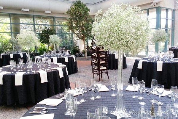 Tmx 1402932522672 20120915151519 600400 Reston, District Of Columbia wedding florist