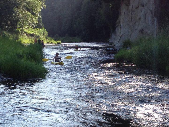 Chehalis River Rapids