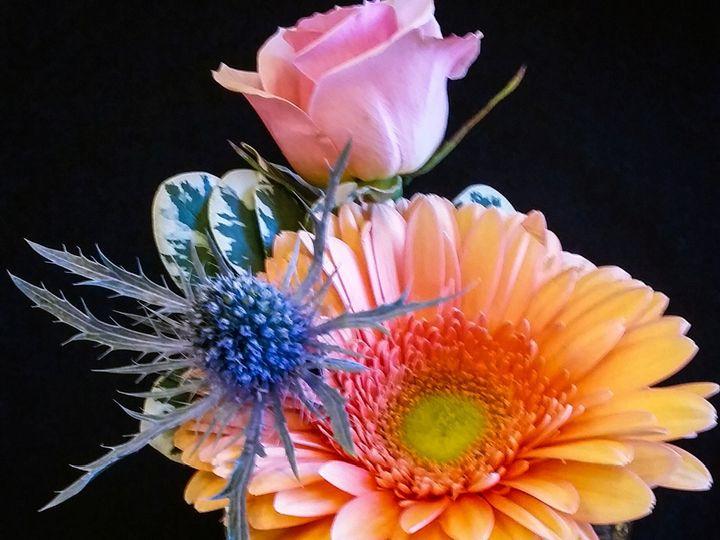 Tmx 1482931903116 Img20160710072635 Milwaukee, WI wedding florist