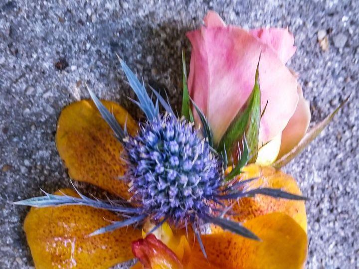 Tmx 1482931946012 Img20160710072651 Milwaukee, WI wedding florist