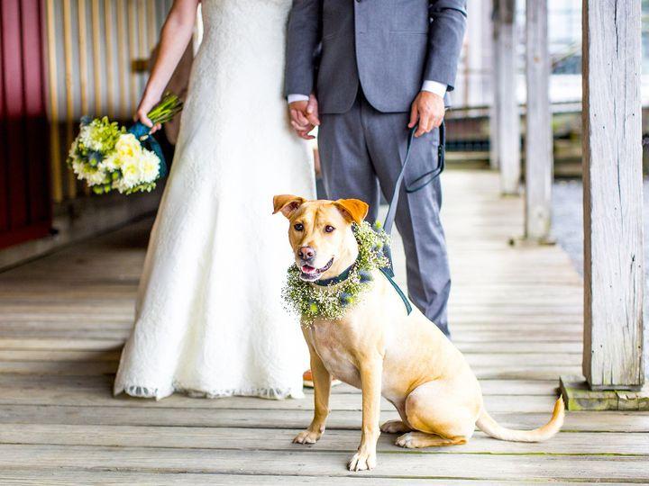 Tmx 1513129485144 Chesapeake Maritime Museum Wedding Washington, DC wedding photography