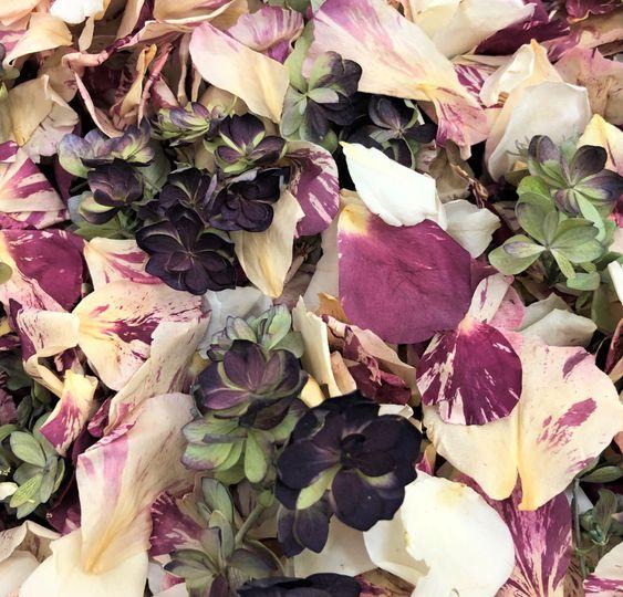 Peppermint Twist Blend Petals