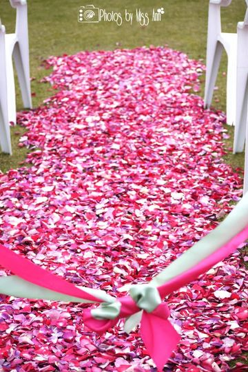 Stunning wedding aisle with Flyboy Naturals Eco-friendly Rose Petals. Wedding took place in...