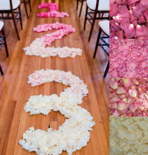 3 2 1 flyboy naturals rose petals aisle with rose