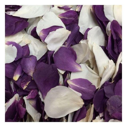 Amethyst Cream Petals