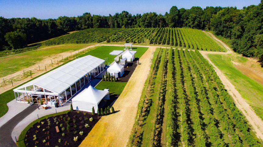 Estate Tent - Vineyards