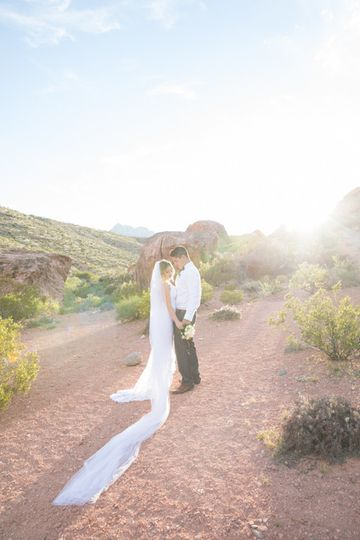 cactus collective weddings 7032