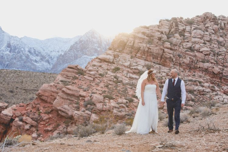 cactus collective weddings 7167