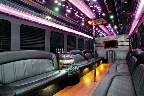 Interior of limousine bus.  Seats 14 passengers.