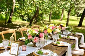 AMV Weddings + Destinations