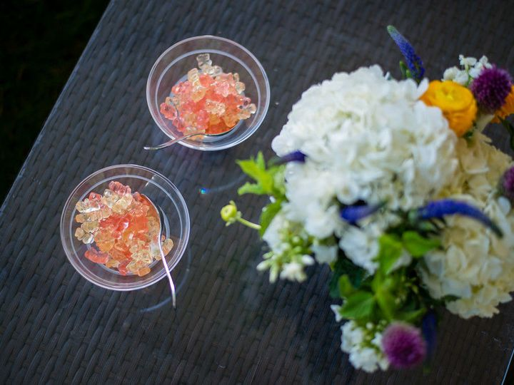 Tmx 1526490578 B25834fbe61383ee 1526490577 0106d68a5f04764c 1526490576534 5 Champagne Gummies Stowe, VT wedding venue