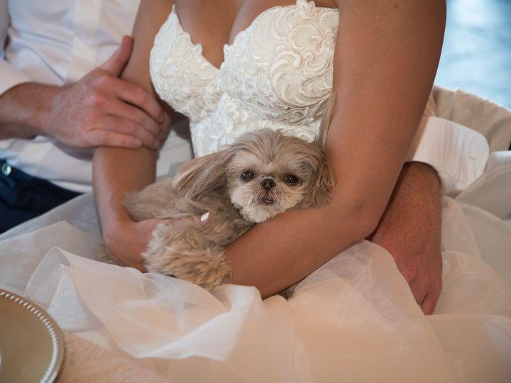 Tmx 6 25 18 Dansara 1042 51 954400 Folsom, CA wedding planner