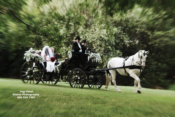 Tmx 1225299129953 BlackVis A VisCalabasas0447YogiBuddy%2706 Moorpark wedding transportation