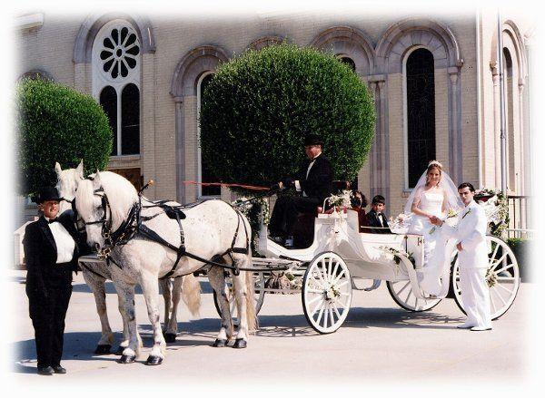Tmx 1225299483156 ArminianCurchwhiteVaV Moorpark wedding transportation