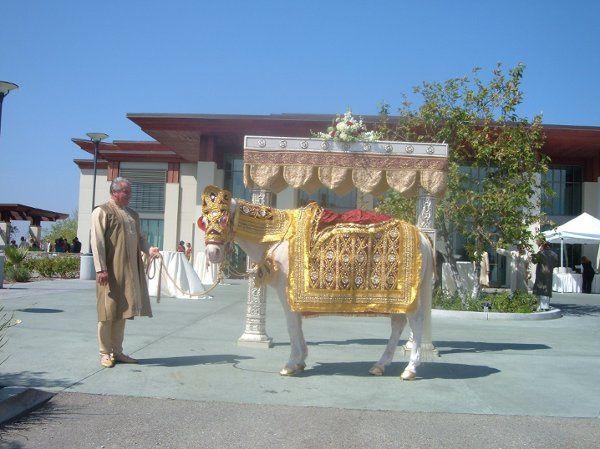 Tmx 1225299817562 DSCF0304 Moorpark wedding transportation