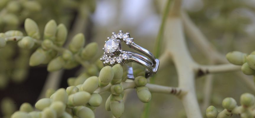 Ring on a branch