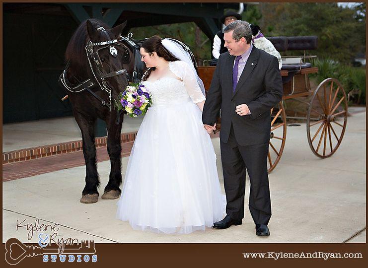 bg w horse