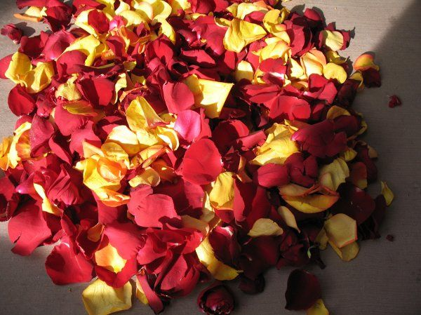 rose petals for the aisle